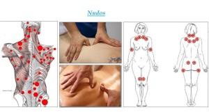 Contracturas, músculos involucrados